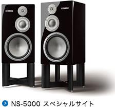 NS-5000 スペシャルサイト