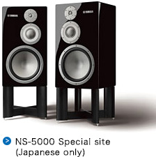 NS-5000 Special site Japanese only