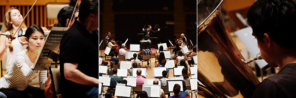PMF Orchestra
