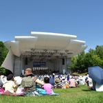 Picnic Concert