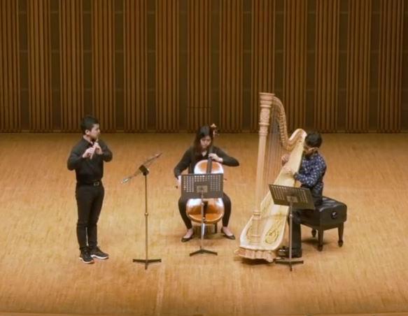 J. ジョンゲン:フルート、チェロとハープのための三重奏曲 作品80