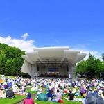 ピクニックコンサート